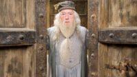 Selon le réalisateur de la dernière série «Harry Potter», il est «clair» que Dumbledore est homosexuel