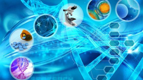 chercheurs University College London cellules souches décès