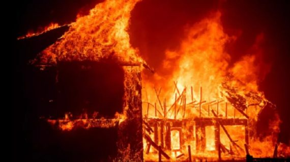 Incendies Californie entretien forêts interdits écologiques climat