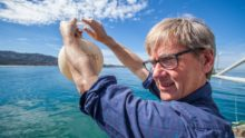 L'erreur mathématique de Ralph Keeling fragilise ses prédictions de réchauffement accéléré des océans